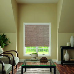 Bali Essentials Roller Shades room scene