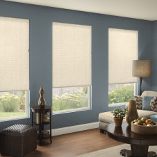 BlindSaver Advantage Light Filtering Double Cell Shades room scene