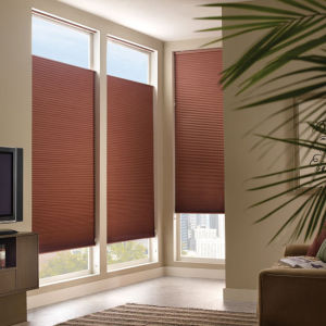 "BlindSaver Advantage 3/8"" Double Cell Blackout Shades Room Setting"
