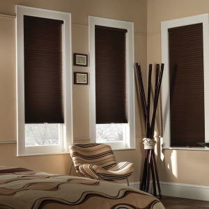 "BlindSaver Basics 1/2"" Single Cell Cordless Blackout Shades Room Setting"