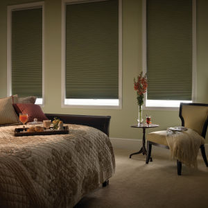 "BlindSaver Advantage 1/2"" Single Cell Blackout Shades Room Setting"