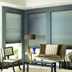 BlindSaver Basics Double Cell Cordless Cellular Shades room scene