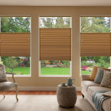 BlindSaver Advantage Double Cell Light Filtering Shades room scene