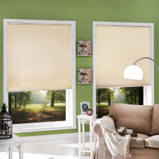 BlindSaver Value Single Cell Blackout Shades room scene