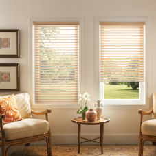 "BlindSaver Advantage 2"" Light Filtering Window Shadings room scene"