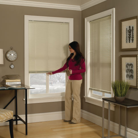 "BlindSaver Basics 1"" Cordless Mini Blind Room Setting"