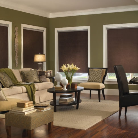 BlindSaver Advantage Roller Shades Room Setting