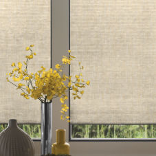 Comfortex Signature Collection Light Filtering Single Cell Shades room scene