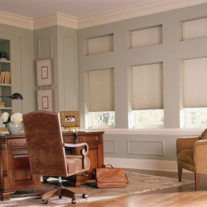 "Comfortex Signature Collection 1/2"" Single Cell Blackout Shades Room Setting"