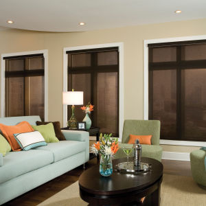 Comfortex Envision Solar Shades Room Setting