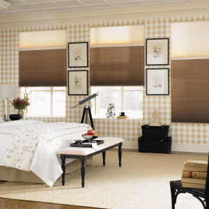 "Graber CrystalPleat 3/8"" Double Cell Light Filtering Shades Room Setting"