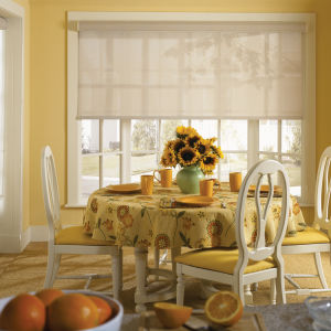Graber Lightweaves Solar Shades Room Setting