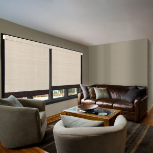 Kristan Cunningham Studio Blackout Roller Shades Room Setting