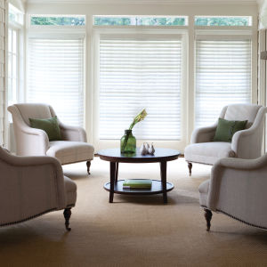 "Levolor Visions 2-1/2"" Faux Wood Blinds Room Setting"