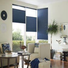 allen roth Blackout Cellular Shades