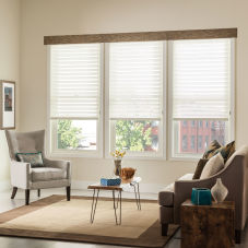 "BlindSaver Premium 3"" Light Filtering Window Shadings"
