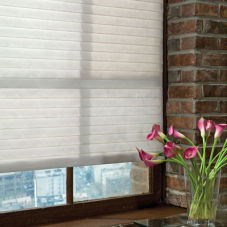 "BlindSaver Basics 2 3/4"" Window Shadings room scene"
