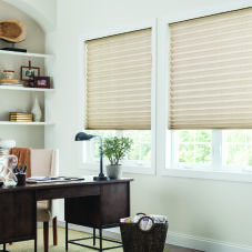 BlindSaver Advantage Pleated Shades