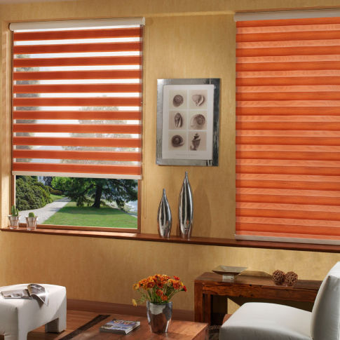 Elite Window Fashions High-Lite Light Filtering Shades Room Setting